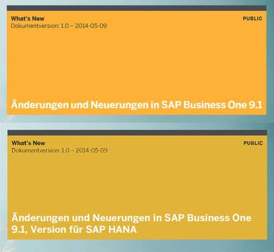 Neues in SAP Business One 9.1